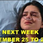 The Young and the Restless Spoilers Preview Week Of November 25-29