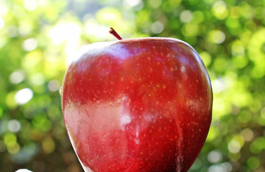 Are Apples Good for You