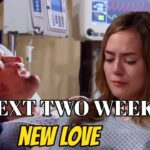 The Bold and The Beautiful Spoilers November 30-December 11 Next 2 Week
