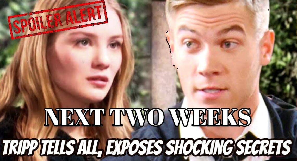 Days of Our Lives Spoilers Next Two Weeks November 30-December 11